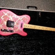 Paisley Tele and Case